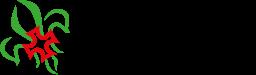 Agrupamento 1351 – Viso